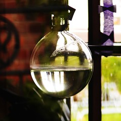 daylight-bulb