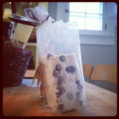 squirrel-marshmallows