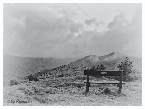 The bench and the horizons