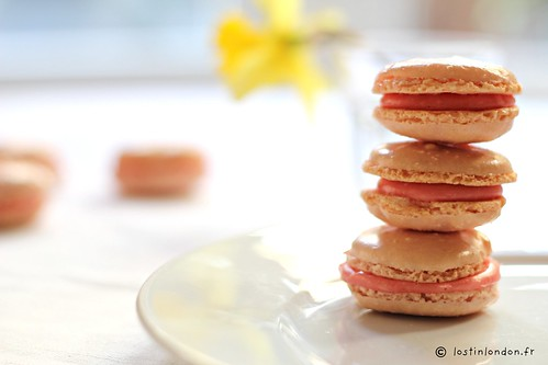 macarons fraises tagada