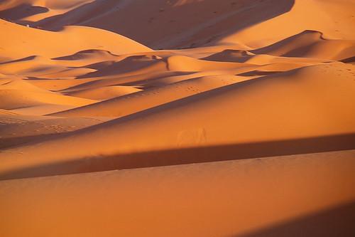 la travesía del desierto