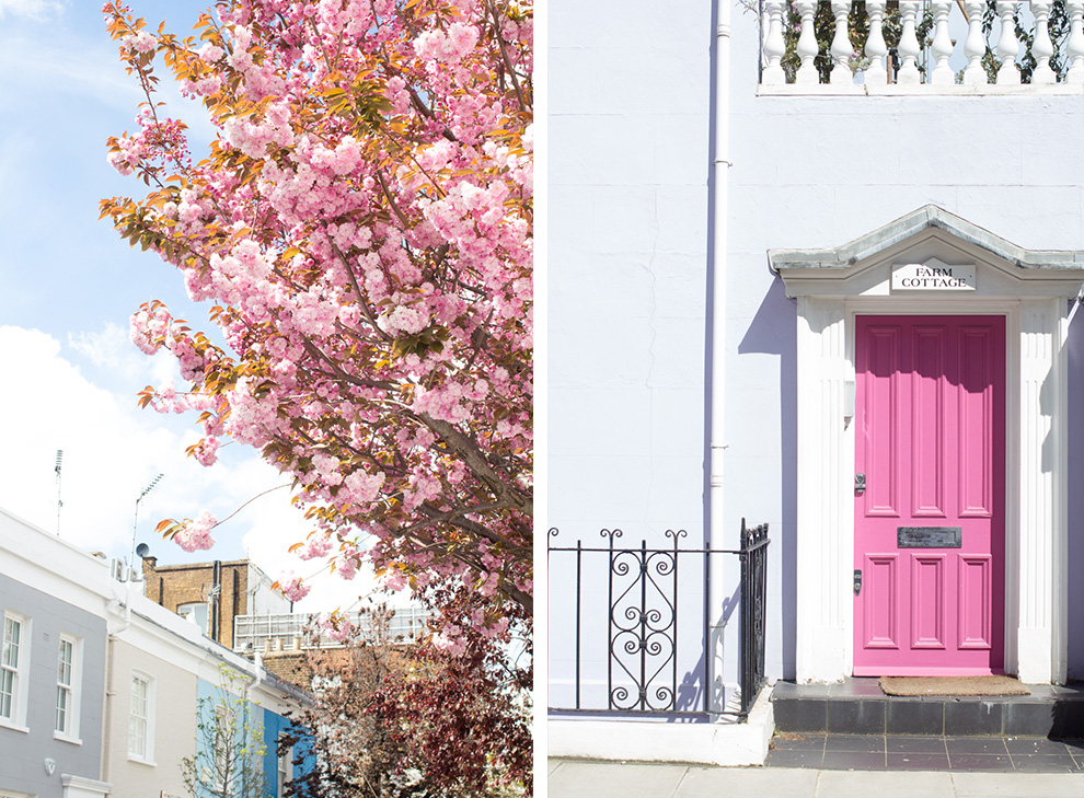 7 Cherry Blossom Notting Hill
