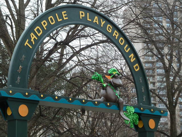 Tadpole at Tadpole Playground dressed for the occasion in Boston Common