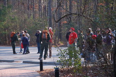 Congaree Crowds Gather