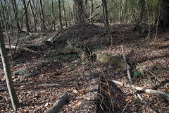 Kingville Ruins