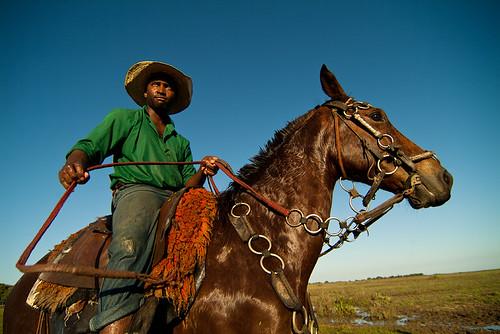 Vaqueiro do Pantanal / Pantanal cowboy