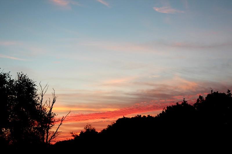Grove sunrise 2