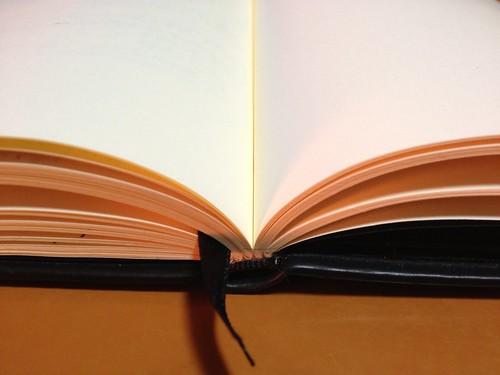 Rhodia web notebook