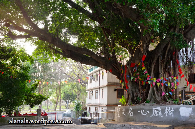 Wish-Making Tree at Fanling Wai