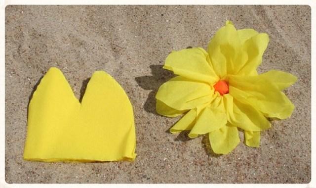 Soorten strandbloemen (2)