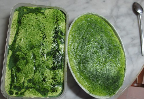 green tea tiramisu2