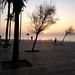 Morgonjogg utmed stranden med Linus