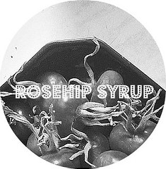 rosehip syrups