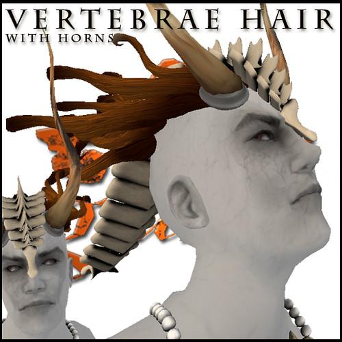 vertebraeNhorns