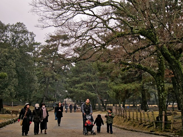 Nara-Koen