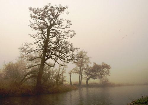 Misty Wey 4