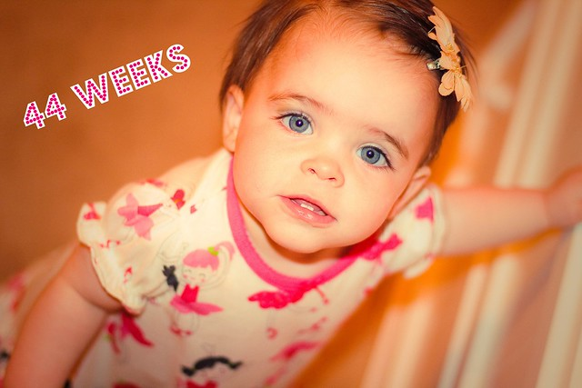 44 weeks