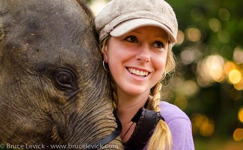Bona the baby Elephant