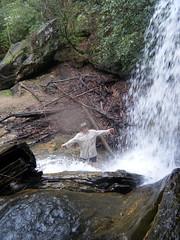 Houston Bathing in Wright Creek Falls