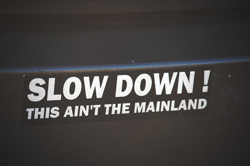 slow down bumpersticker