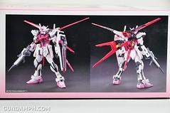 RG 1-144 Strike Rouge Gundam Plamodel EXPO Limited Version Unboxing Photos (6)