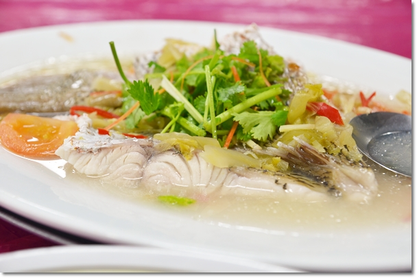 Fish Shop Johor Bahru