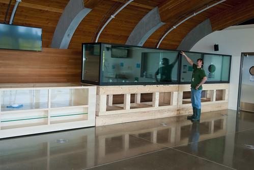 Display Aquarium Arrival - In Place