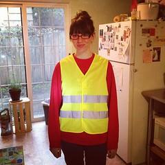 Angel's New Safety Vest