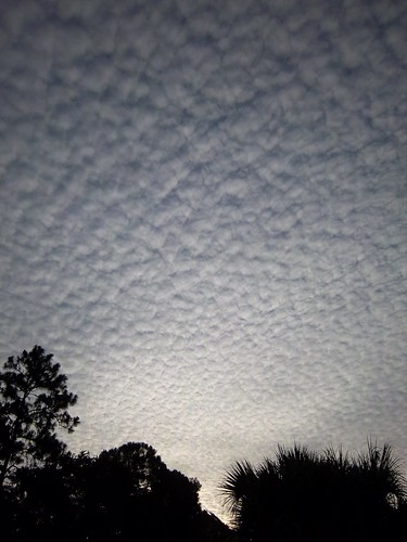 """mackerel sky"""