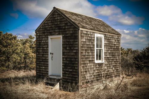 Love Shack by dogfrog