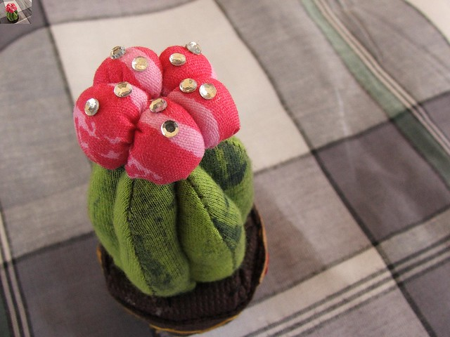 cactus pincushion by PC Lim