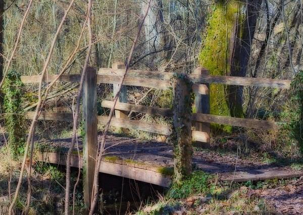 Petit pont - Lac de Marcenay