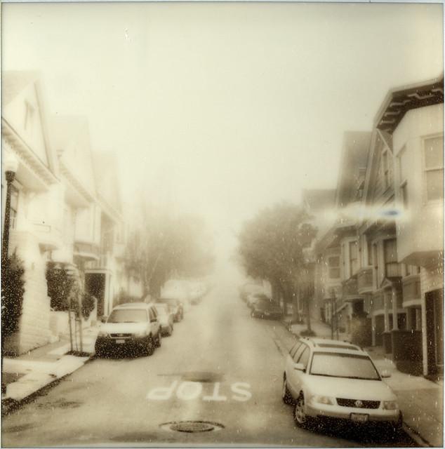Foggy 39/365