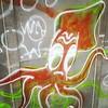 Squid!!!