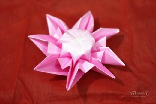 Origami Daisy