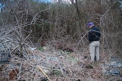 Kingville Debris