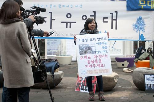 Myeongdong9web