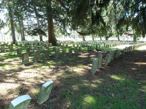 Veterans section (10)