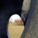 Through the eye of Henry