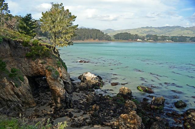 2012-02-18 San Simeon Pt hike-31_edited-1