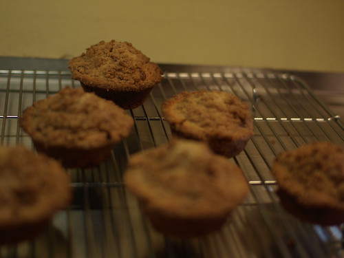 Cinnamon-chip muffins by ted_major