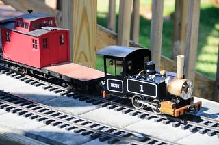 Model Steam Trains-35