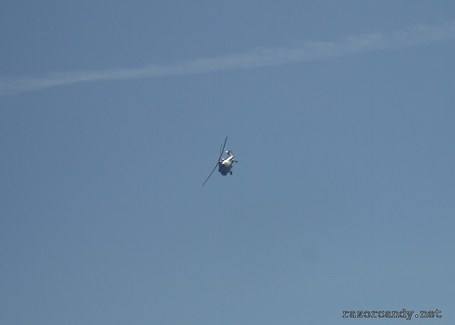 Black Cats - Southend Air Show - Sunday, 27th May (14)
