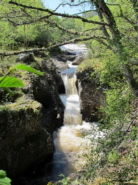Orrin Falls