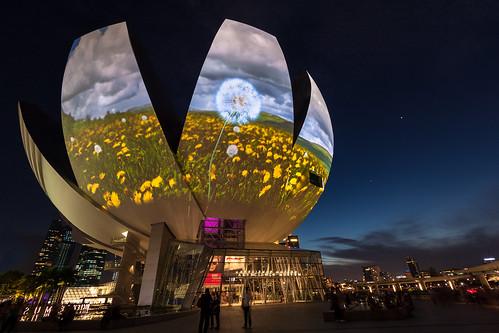 Art Science Museum by SkyStrike