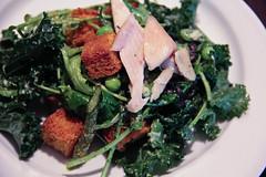 dieta białkowa opis