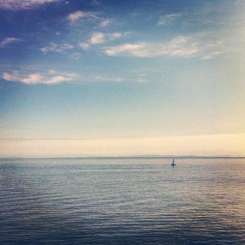 Tiny sailboat