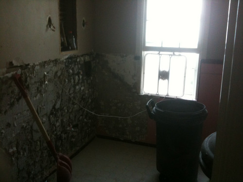 Bathroom Remodel: Day One, Tile Removal