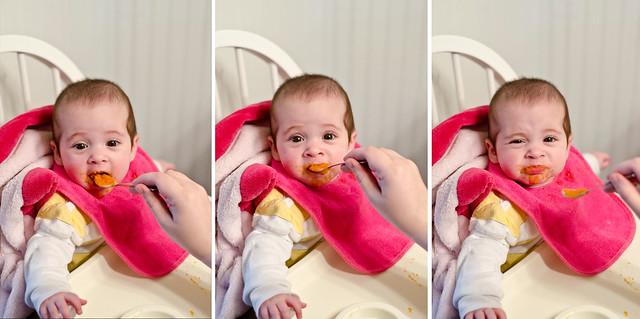 baby food sweet potatos 3n1
