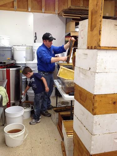 David & Roby at work harvesting